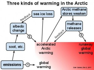 ThreekindsofwarmingintheArctic