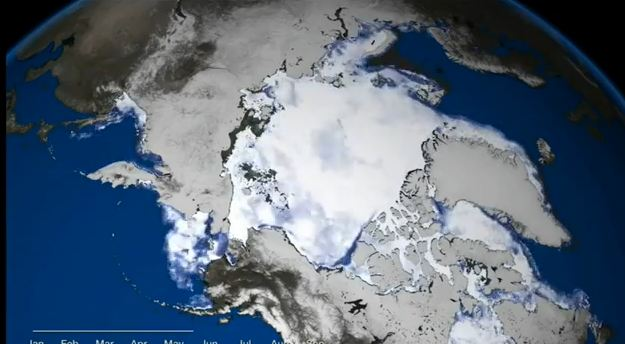sea-ice-video