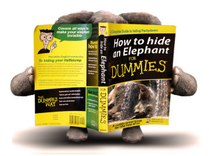 hide-an-elephant-for-dummies