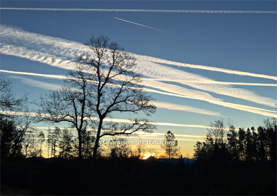 Upcoming Major Northern California Climate Engineering Awareness Event, Saturday, July 28th, 2018