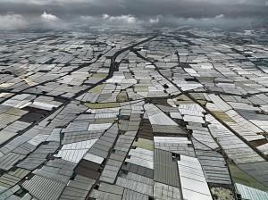 greenhouses2