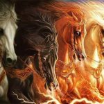 horses-700x467