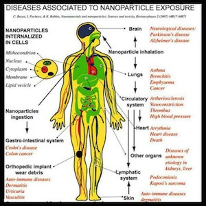 nanoparticle exposure