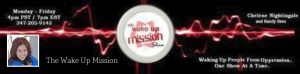 the-wake-up-mission