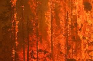Alaska fire