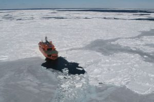 Sea Ice Record Retreat Has Antarctic Experts Worried For Wildlife, Climate