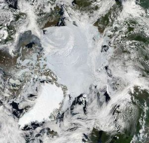 mosaic-of-images-from-the-arctic