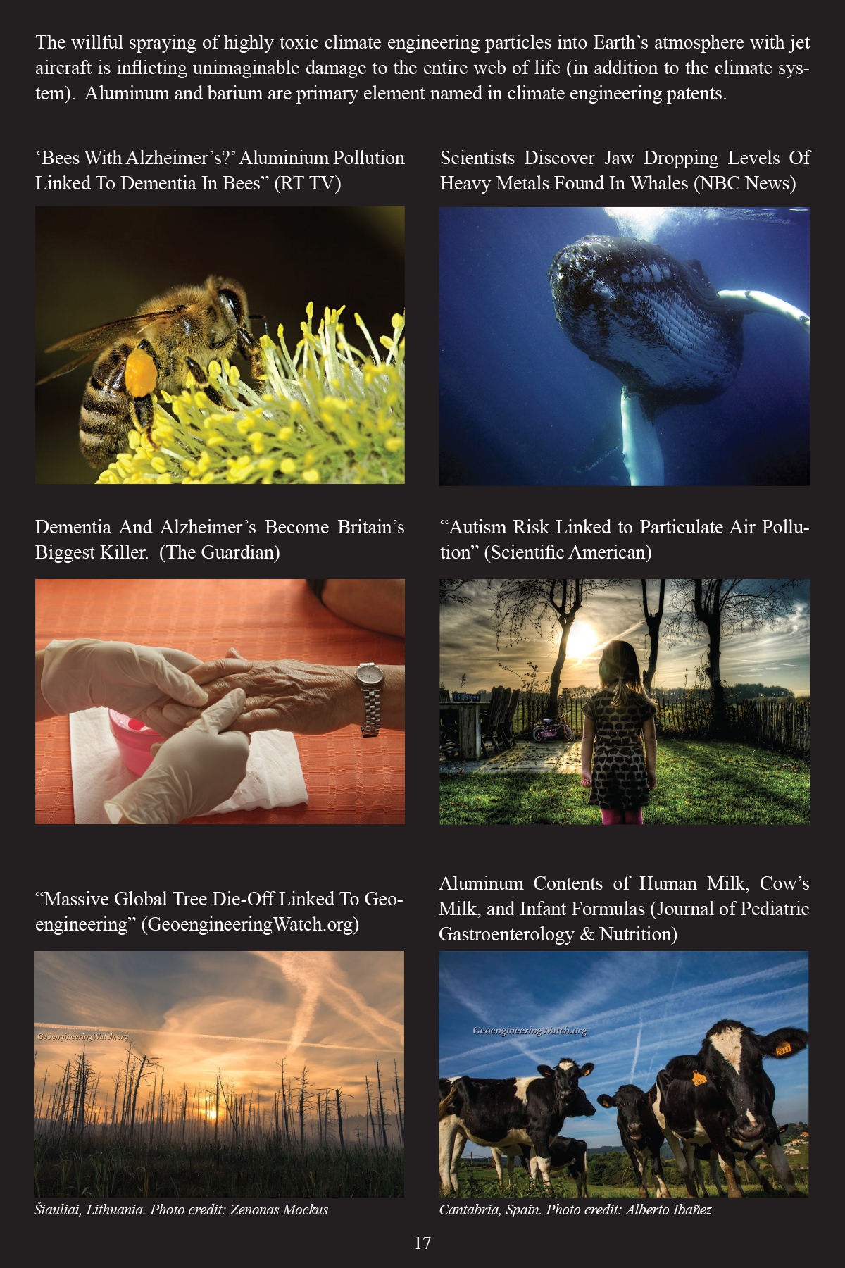 Climate Engineering Fact And Photo Summary - page 17